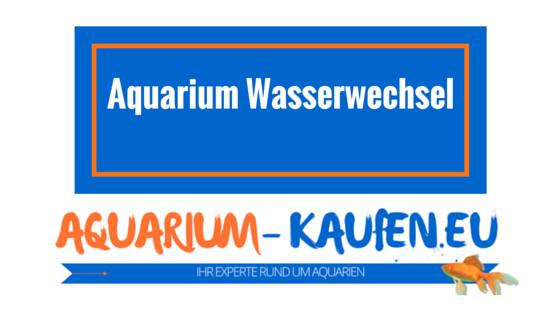 Aquarium wasserwechsel wie funktioniert es am einfachsten for Aquarium wasserwechsel